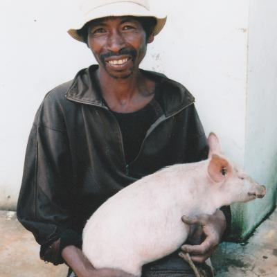 Donne ton porc madagascar