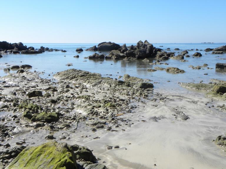 Nagpali plage (5)