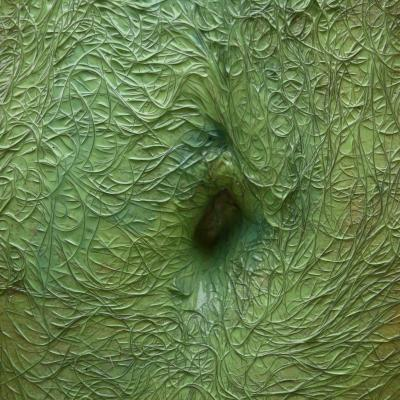 Nombril au vert